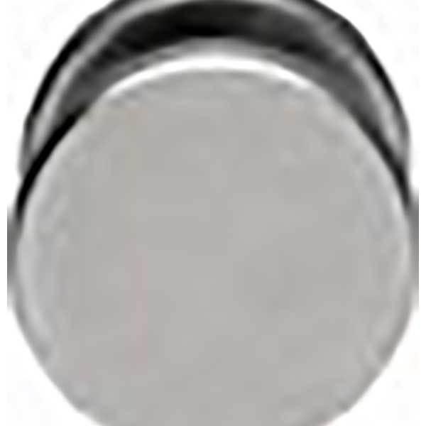Musca-RVS-vaste-knop